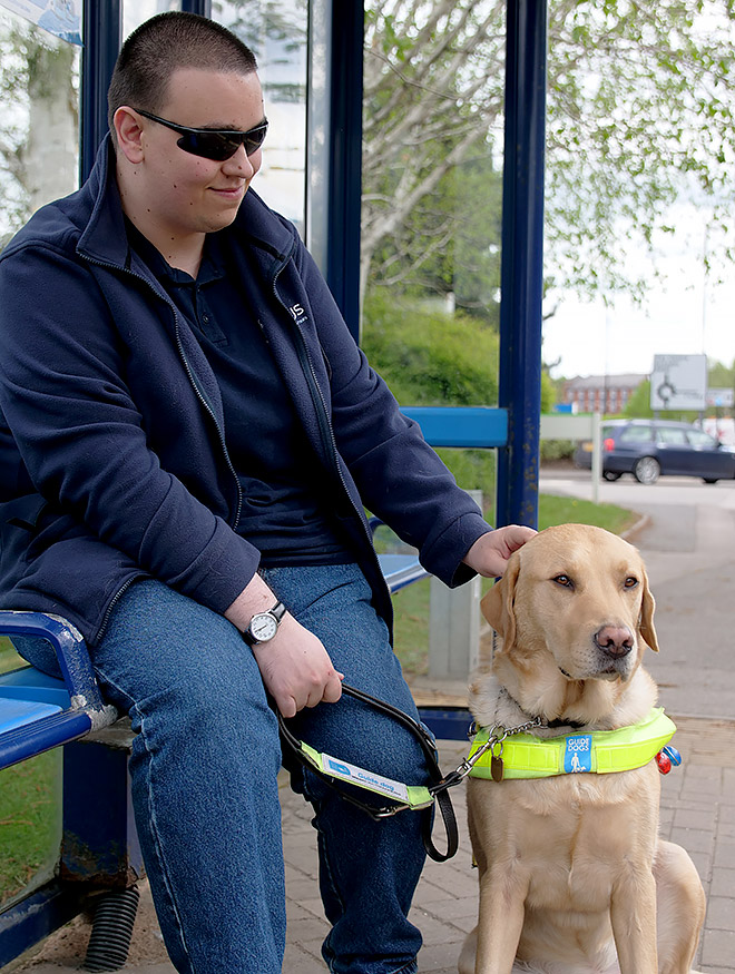 A man at a bus stop wearing dark glasses with his guide dog